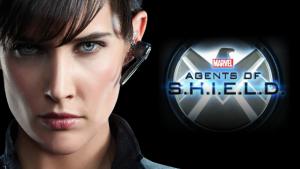 Agents of S.H.I.E.L.D (15)