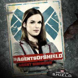 Agents of S.H.I.E.L.D (4)