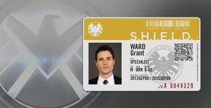 Agents of S.H.I.E.L.D (8)