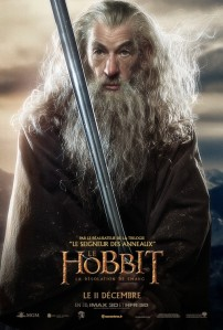 hobbit_the_desolation_of_smaug_ver17