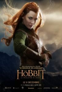 hobbit_the_desolation_of_smaug_ver19