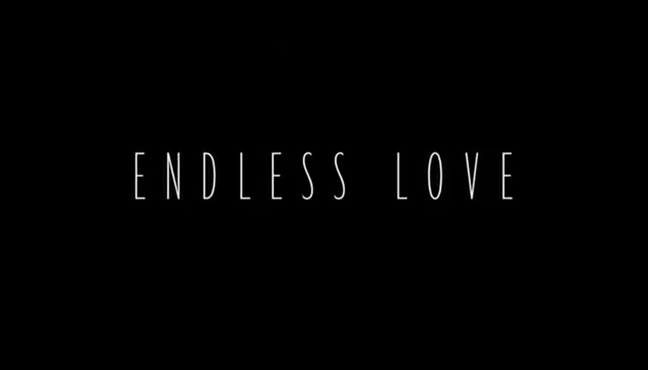 Endless Love 2014 « BigRedNoodLe's World