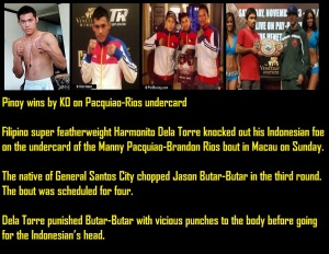 Pinoy Boxing 11242013